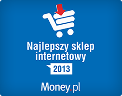Ranking Money.pl 2013