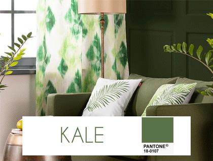 kolor przygaszonej zieleni, kolor zielony, kolor roku kolor kale we wnętrzach