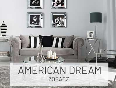 Salon w amerykańskim stylu